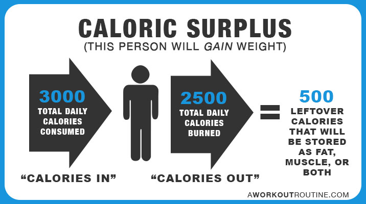 Caloric Surplus: This person will gain weight.